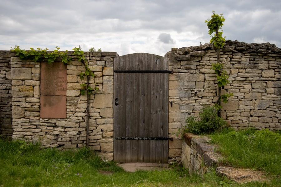 Weinbau an der Unstrut: Trockenmauer.