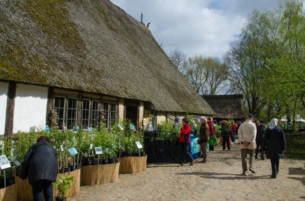 Marktstände zwischen den alten Gebäuden - Pflanzenmarkt am Kiekeberg