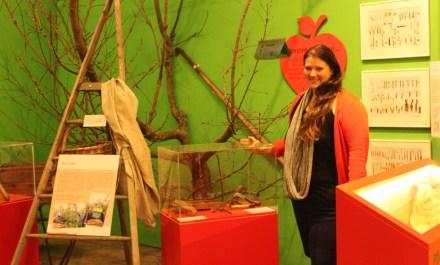 """Carolin Keßler in der Sonderausstellung """"Der Apfel. Kultur mit Stiel"""" Bild: FLMK"""
