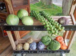 Gemüse in der Milchtankstelle