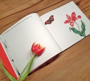 Mein großes Kunstmalbuch