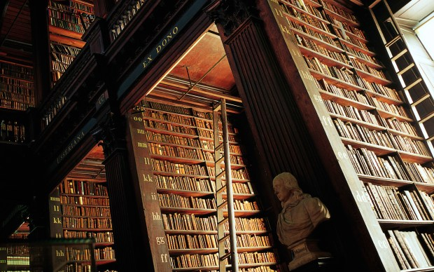 Close-up of marble busts and oak shelving, The Long Room, Trinity College Library, Dublin, Ireland