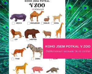 hledací hra zoo