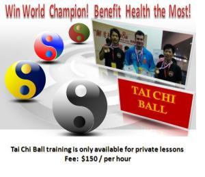 Tai Chi Ball