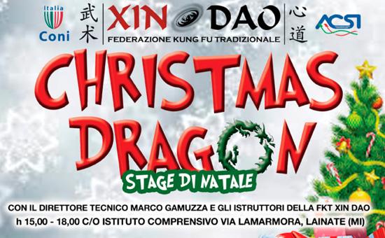 Christmas Dragon – Stage di Natale bambini