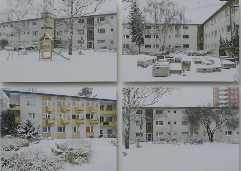 Maziar Moradi, Ich werde deutsch, Kunstverein Ludwigshafen