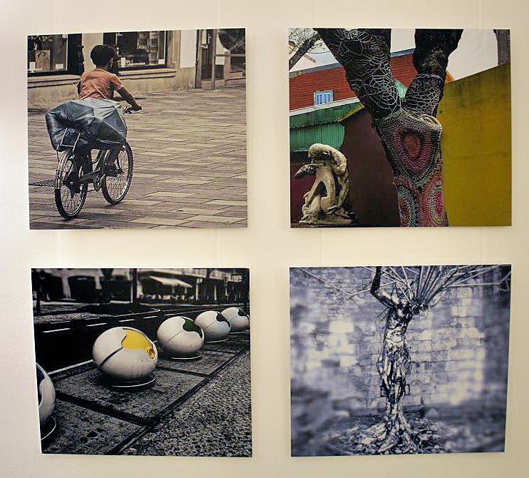 Eva Schmidt, Bildpaare Müll und Baum