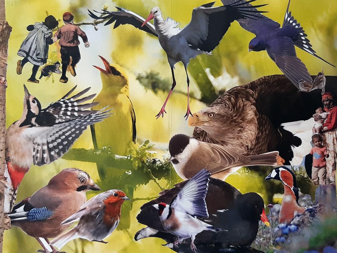 "Marten Bos, ""oei, vogels!"", collage, 30 x 40 cm"