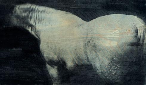 Ibrahim, 2003. Fotoemulsion på træ, 60 x 120 cm.