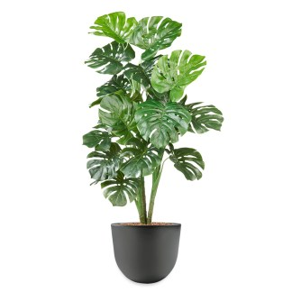 HTT - Kunstplant Monstera H120cm in Eggy35 antraciet - kunstplantshop.nl