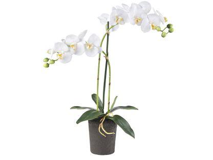 HTT Decorations - Kunstplant Orchidee / Phalaenopsis 2-tak wit H53cm - kunstplantshop.nl