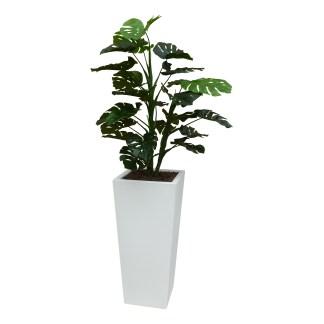 Kunstplant Monstera met sierpot Genesis38 wit - kunstplantshop.nl