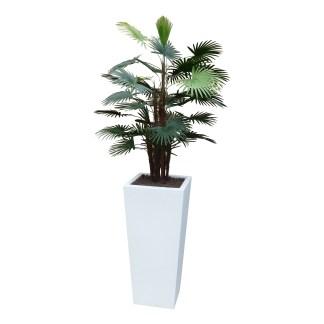 Kunstplant Rhapispalm met sierpot Genesis38 wit - kunstplantshop.nl