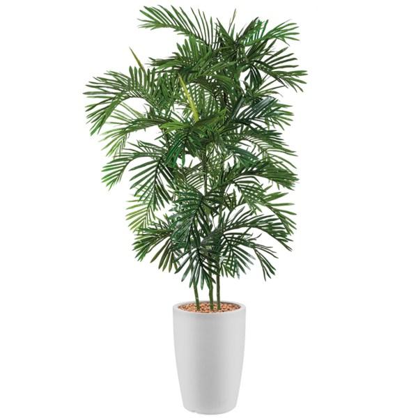 HTT - Kunstplant Areca palm in Genesis rond wit H210 cm - kunstplantshop.nl