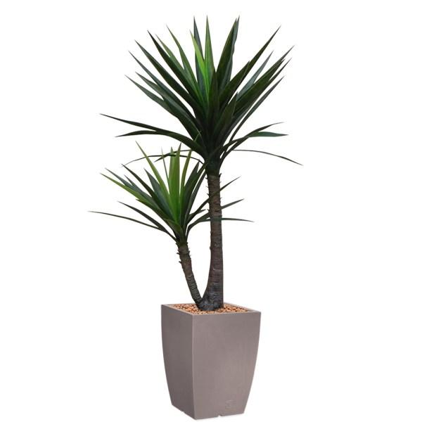 HTT - Kunstplant Yucca in Genesis vierkant taupe H150 cm - kunstplantshop.nl