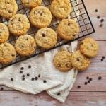 Das beste Cookies-Rezept - Schokocookies mit Haferflocken