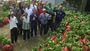 "Team Balawa berikan batuan bibit kopi ke ""Kelompok Tani Amanat"", di Desa Curug Bitung Kecamatan Nanggung, Bogor 16/11 (dok. KM)"
