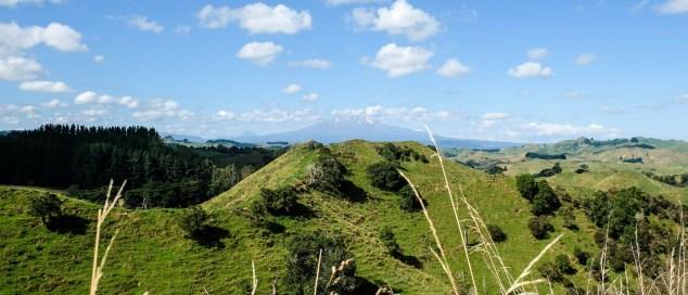 Mt Ruapehu In Der Ferne