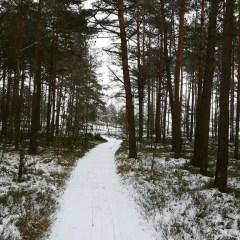 Ostatnia szansa tej zimy na skorzystanie z tras narciarskich w gminie Zabrodzie