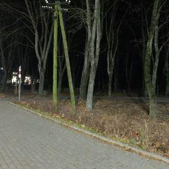 Nowe pomysły urzędników na park miejski w Wyszkowie