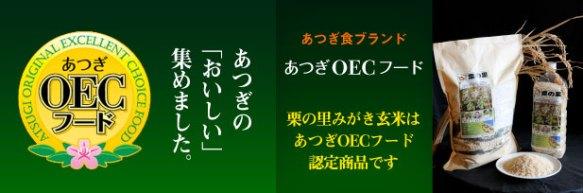 info_OEC