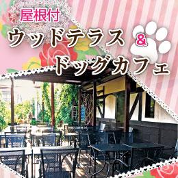 ♪♪ドッグカフェローズガーデン♪♪