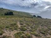 On the meadows / tundra / pumice toward Banshee peak. I found a couple feint way trails, but otherwise had to pick my way across loose ground. Easy to navigate, but difficult to walk on. Loose sand, you know.