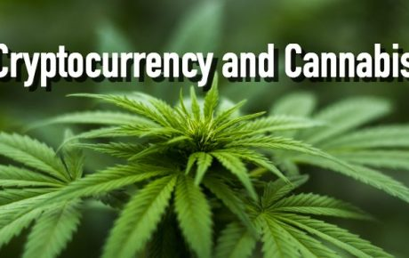TOP CANNABIS 🌱 CRYPTOCURRENCIES PICKS OF 2018