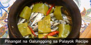 Pinangat na Galunggong sa Palayok Recipe