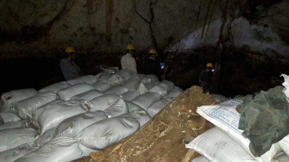 Yarasa gübre fiyatı Mağaradaki zorluklara göre değişiklik gösterebilir