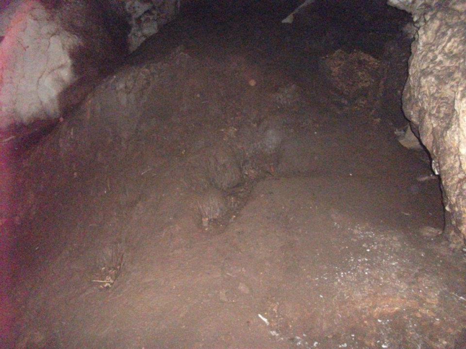Yarasa Mağarasındaki Gübre