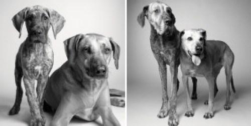 Kayden (11 hónaposan, 7 évesen) és Brodie (5 és 12 évesen)