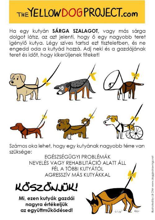 Mit jelent, ha sárga szalag van a kutyán? (szeretlekmagyarorszag.hu)