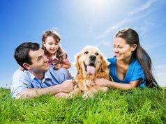 családbarát kutya