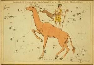 Camelopardalis - Urania's Mirror