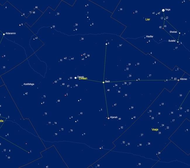 Kaart van het sterrenbeeld Cygnus - Zwaan met de namen van de sterren