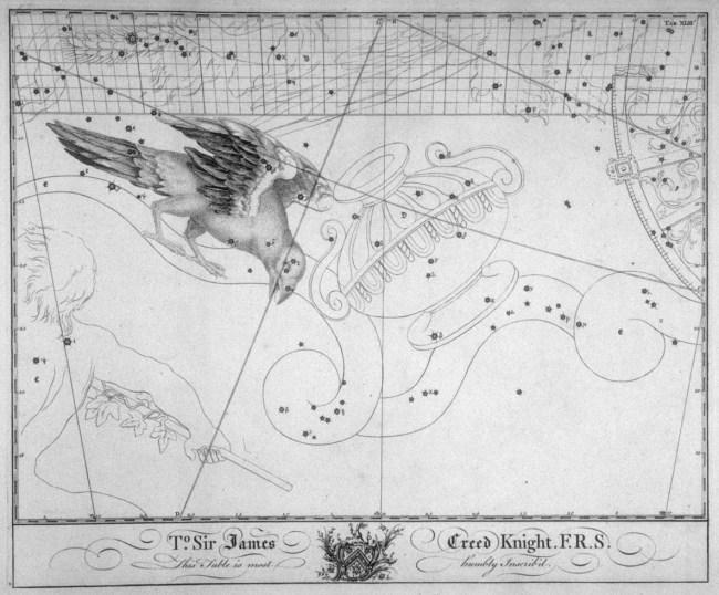 Klassieke afbeelding van het sterrenbeeld Corvus uit de steratlas van John Bevis
