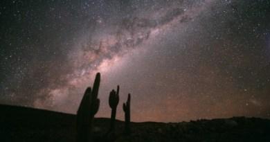 Sterren in de Melkweg