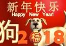 2018-jaar-van-de-hond