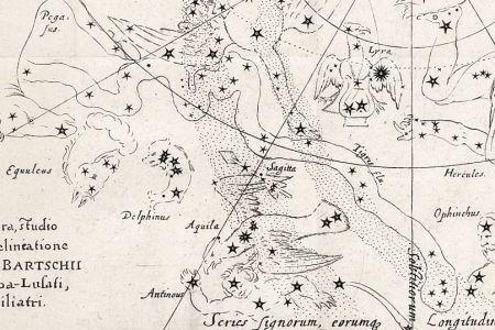 Het sterrenbeeld Tigris volgens Bartsch