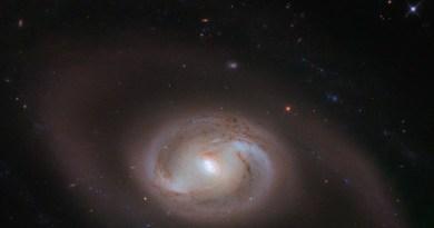 NGC 2377 in het sterrenbeeld Lynx