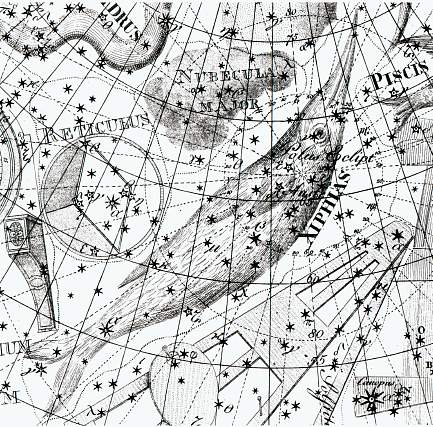 Dorado - Goudvis uit de Uranographia van Johann Bode
