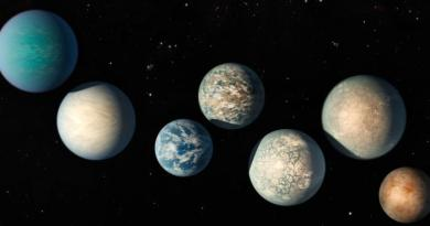 Artist impressie van verschillende exoplaneten.