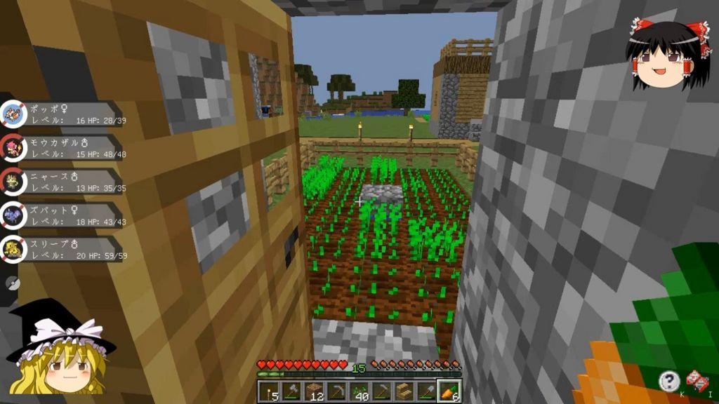 自宅の裏の野菜畑