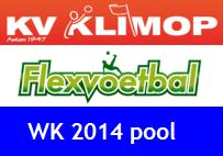 wk2014-pool