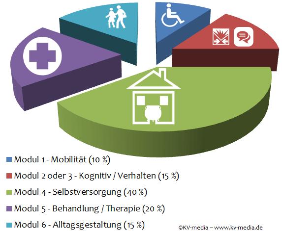 Prozentualer Anteil der bewerteten Module bei der Feststellung des Pflegegrades