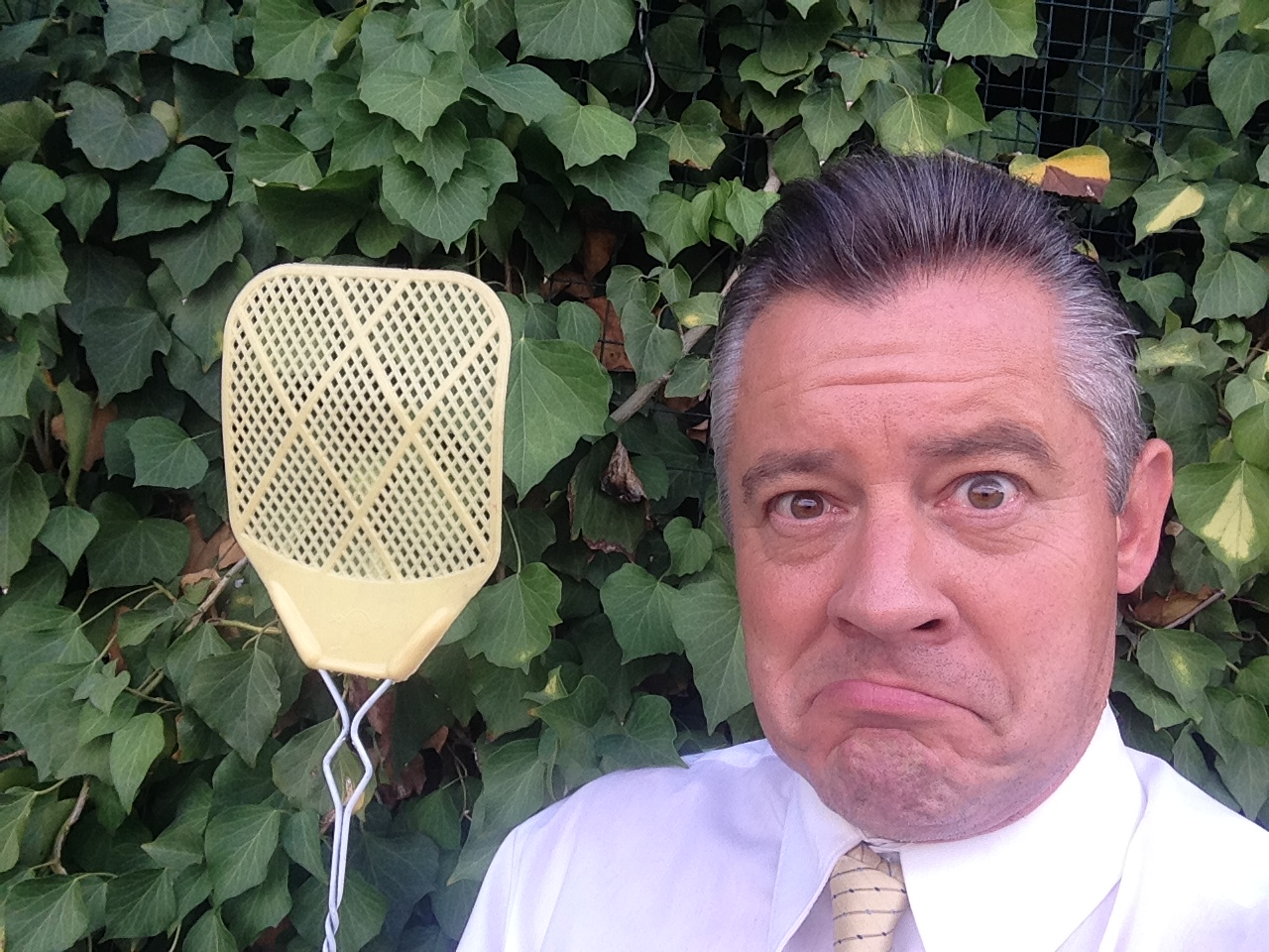 Bettes Fly Swatter 2