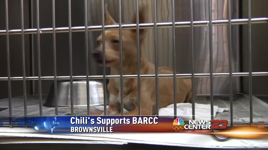 Chili-s to Donate Percentage of Customers bill to BARCC_88518863-159532
