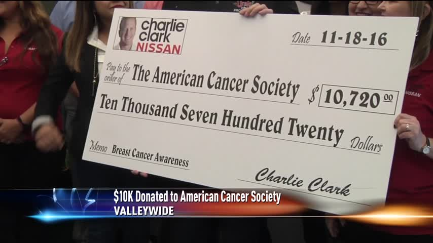 American Cancer Society Receives -10K_44514380-159532
