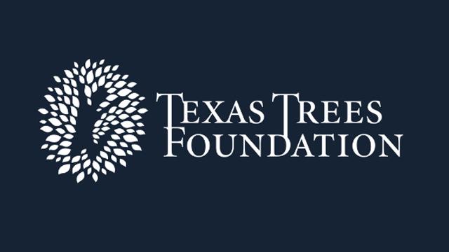 TexasTrees_1556121827636.jpg
